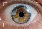 digital identity eyescan biometrics