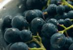 grapes food traceability