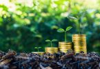green bonds assets investment