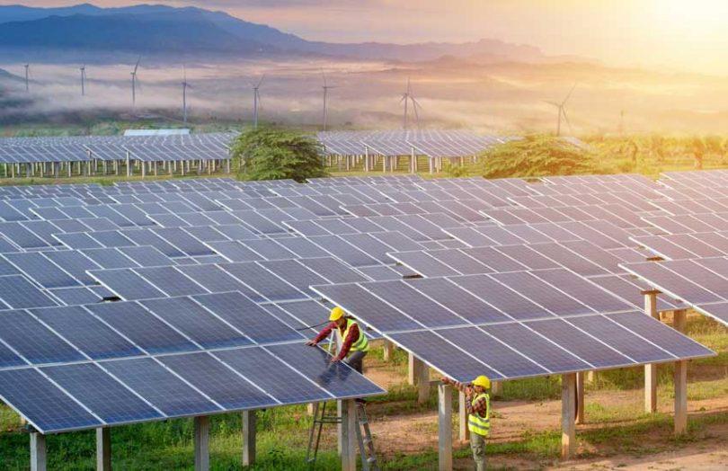 solar panel farm renewables