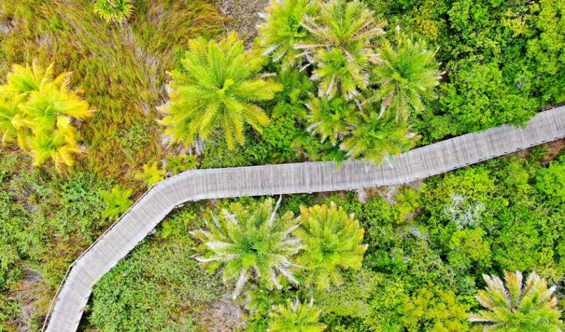 Interwork Alliance создал группу по экологической устойчивости