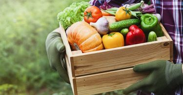 vegetables fruits farm agriculture food traceability