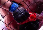 professional fighters league pfl mma martial arts