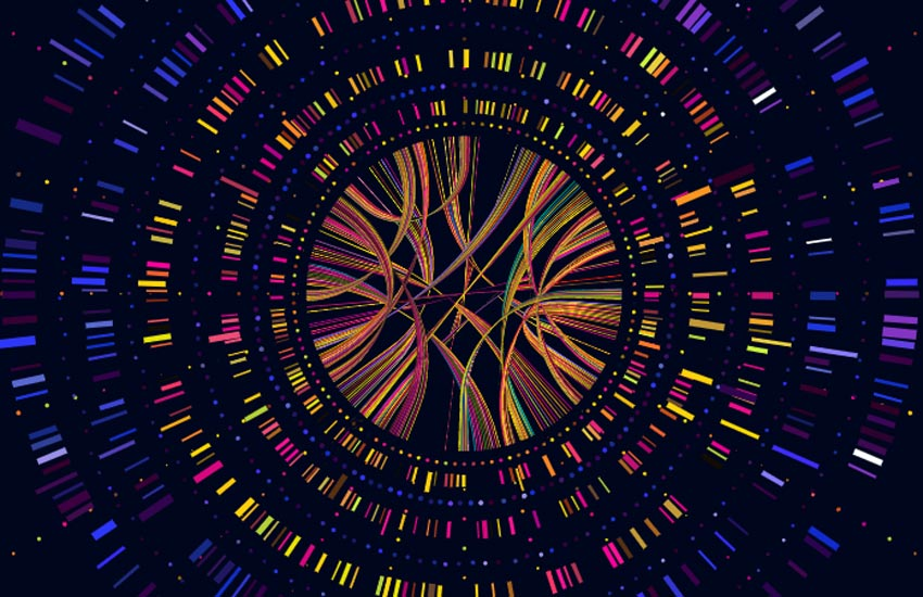 genome sequence